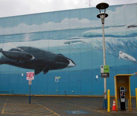peinture ville anchorage baleines, belugas